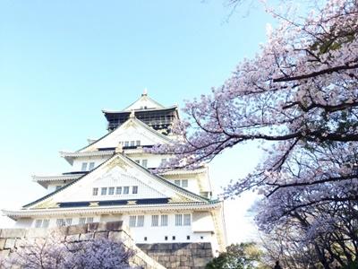 大阪城公園の花見の穴場をピックアップ