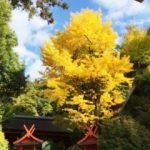 奈良観光のモデルコース!女子旅で歩くなら美味しく楽しいこのルート