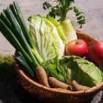 野菜が高騰した時の7つの対策!家計の危機を乗り切る主婦の知恵